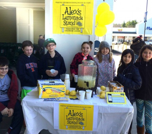 South Area Jewish Community Mitzvah Day
