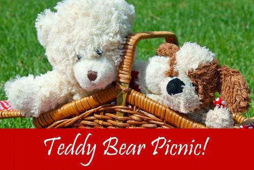 TeddybearpicnicforJB