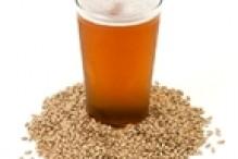 beer_barley_web_medium