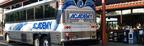bus_new_york_washington_medium
