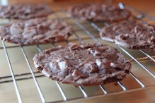 cookies_large_cookies_large-2