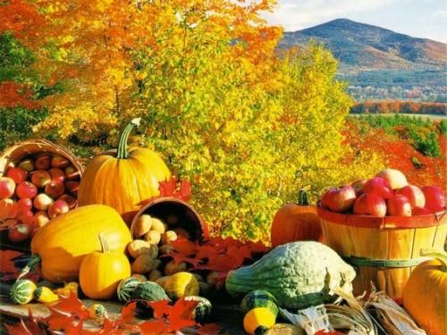 fall_large