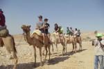 kids_on_camels.jpg