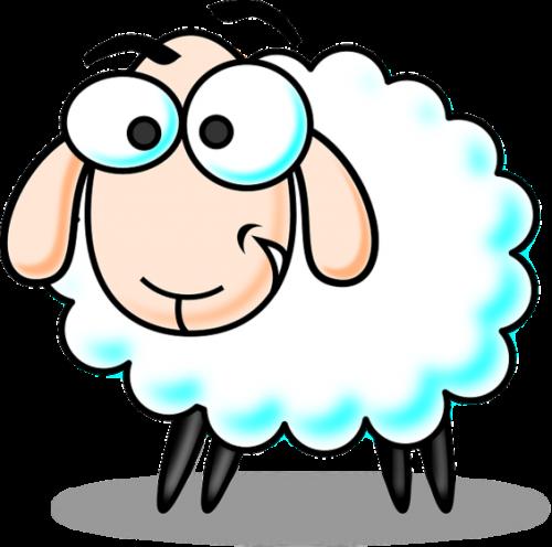 lamb_large