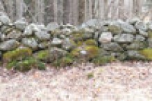 new_england_stone_wall_medium