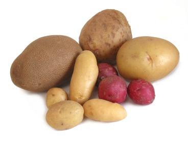 potatoes-group_large_potatoes-group_large