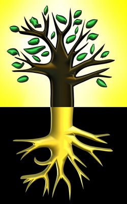 roots_branches