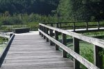 boardwalk-trail-summer